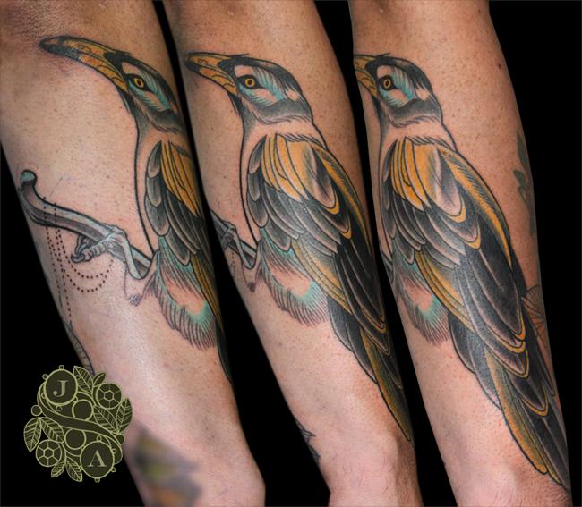 Bird tattoo Justin Acca